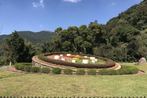 From Taipei: Beitou Hotsprings and Yangmingshan Volcano Tour