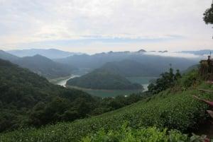 Taipai: Full-Day Pinglin and Elephant Mountain Tour