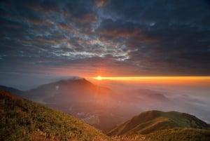 Taipei Sunrise Excursion: Yangmingshan National Park