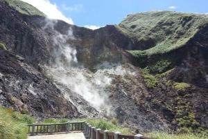 Yangmingshan National Park & Hot-Spring Tour