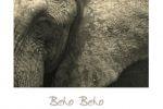 Beho Beho
