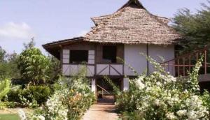 Eileen's Tree Inn