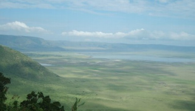 Forsters Tours and Safaris