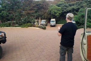 From Arusha: Mt Kilimanjaro Hiking Day Tour with Lunch