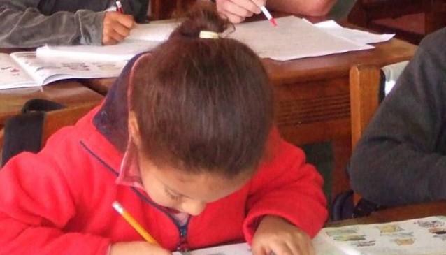 Iringa International School