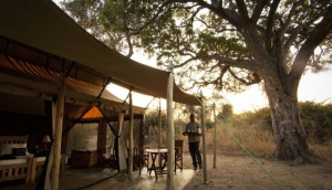 Kigelia Camp