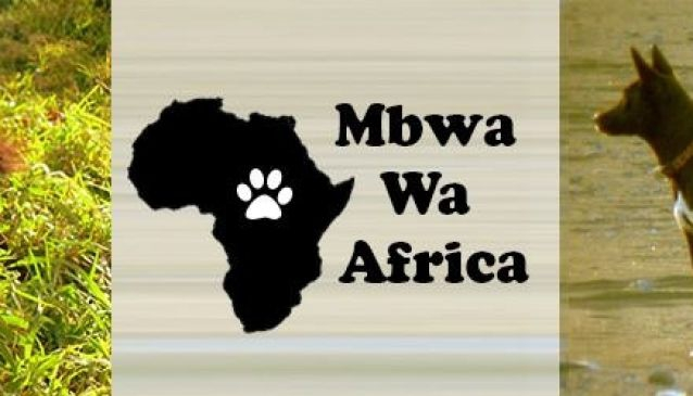 Mbwa Wa Africa Animal Rescue & Kennel Service
