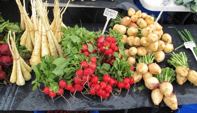Harvest Launceston