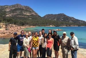 3-Day Tasmanian Tour From Launceston to Hobart