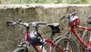 Adventure Tarraleah - Bike Tours