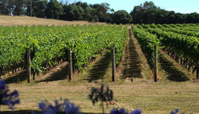 Bay of Fires Wines Tasmania