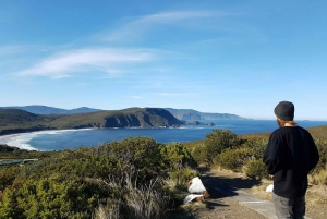 Bruny Island Highlights Day Trip from Hobart