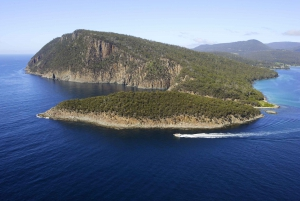 Bruny Island Wilderness Coast Eco-Tour from Hobart