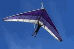Cable Hang Gliding