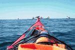Canoe 'N' Surf