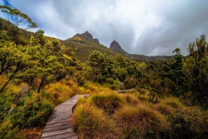 Cradle Mountain: Day Trip from Launceston with Lunch