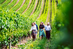 Drink Tasmania Signature Tour: Wine, Cider, Beer and Whisky