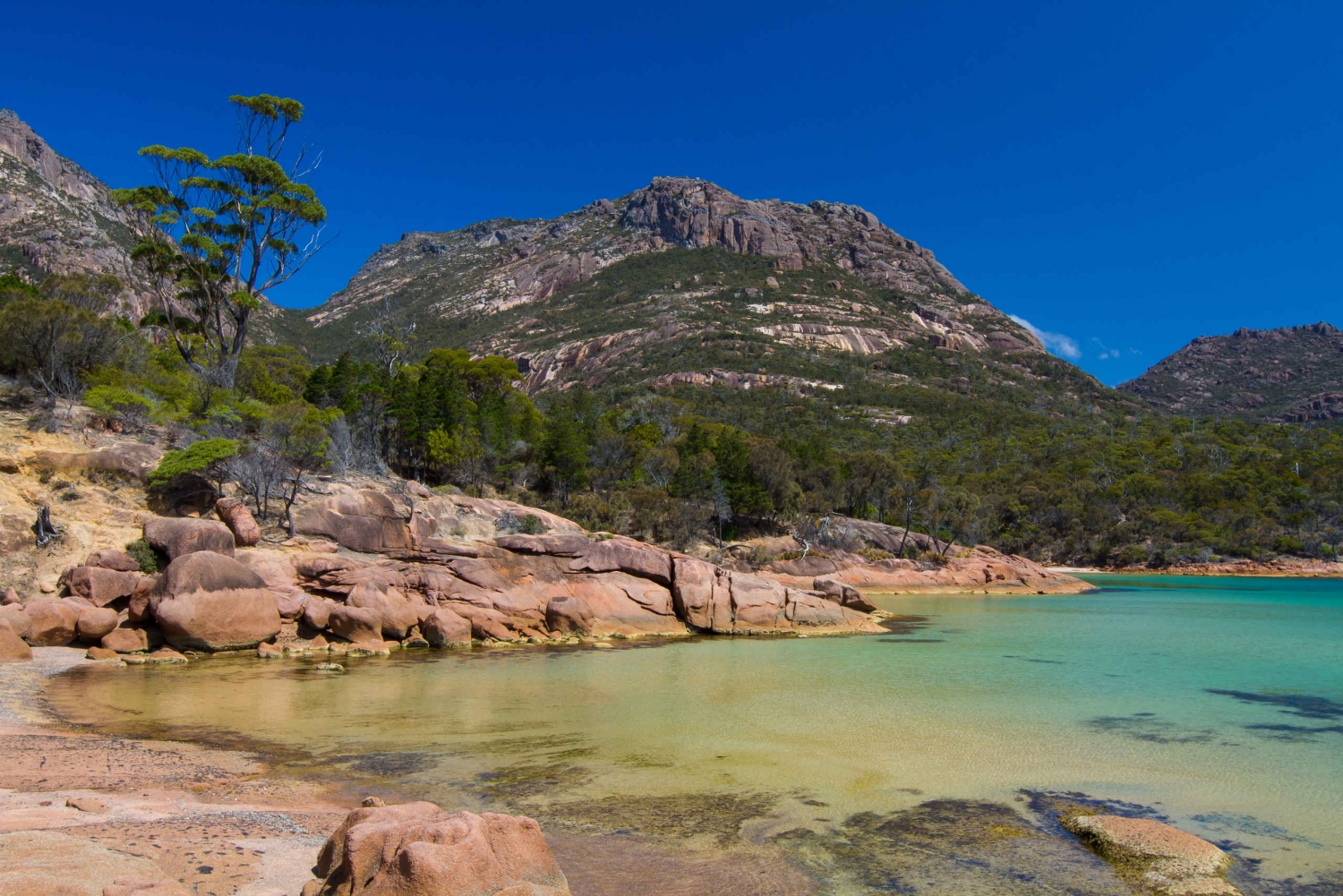 Freycinet National Park Navigator 4 Hour 4WD Tour