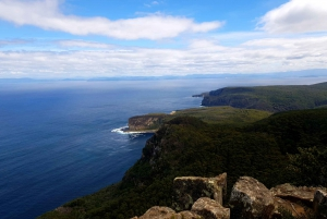 From Hobart: Cape Raoul Hiking Tour in Tasman National Park