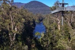 From Hobart: Full-Day Tahune Airwalk & Hastings Caves Tour