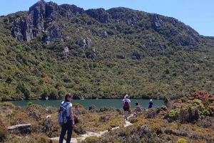 From Hobart: Hartz Mountain National Park Hiking Tour