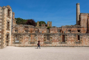 From Hobart: Port Arthur and Tasmanian Devil Unzoo Day Tour