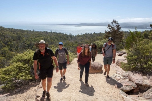 From Hobart: Wineglass Beach Day Trip
