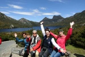 From Launceston: Cradle Mountain Day Tour