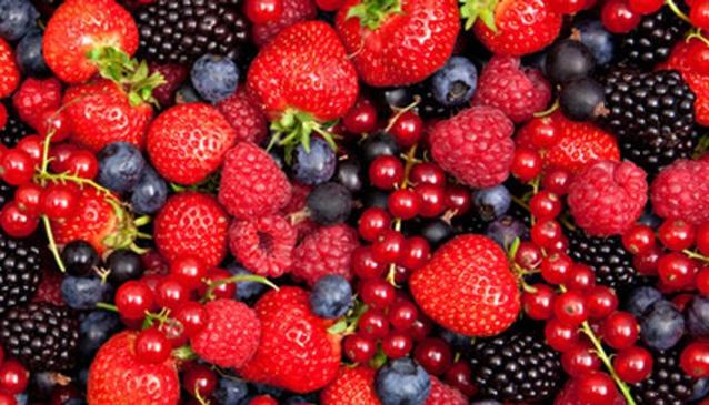 Hillwood Berry Farm