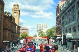Hobart: 24-Hour Hop-on Hop-off Sightseeing Bus Ticket