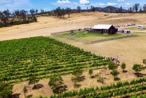 Hobart: Best of Tasmanian Wine Day Tour
