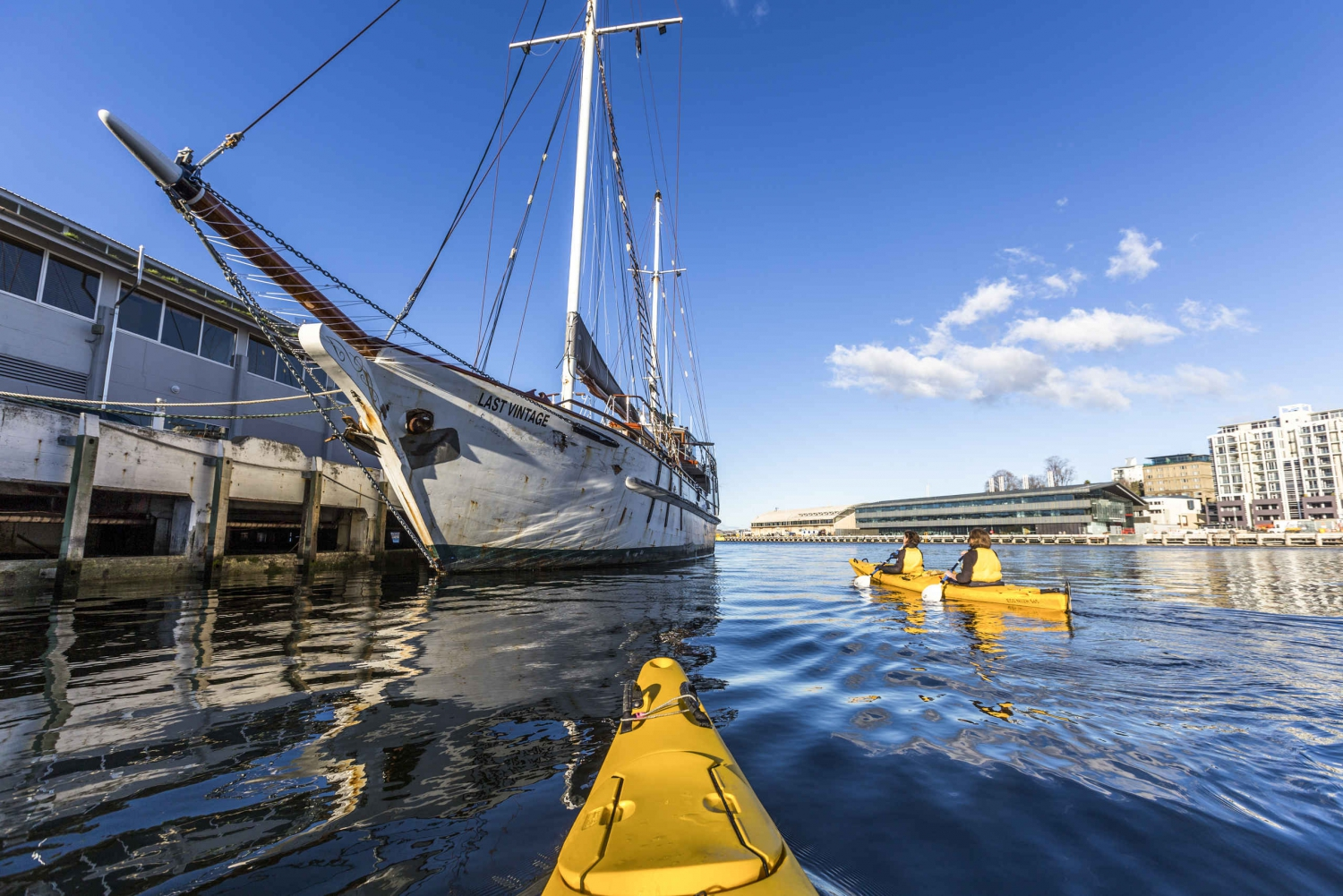 Hobart City 2.5-Hour Kayak Tour