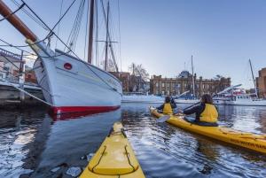 Hobart City 2.5-Hour Kayak Tour