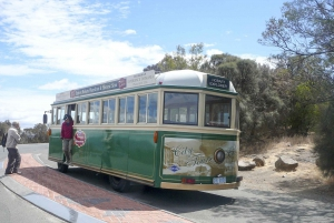 Hobart City Sightseeing Tour including MONA Ticket