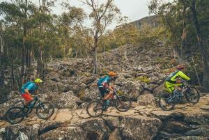 Hobart: kunanyi/Mt Wellington Explorer Bus Pass
