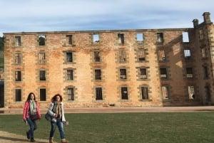 Hobart: Port Arthur and Lavender Farm Tour