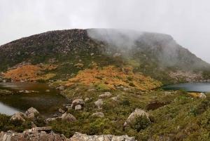 Hobart: Tarn Shelf Mount Field National Park Day Hike