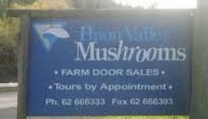 Huon Valley Mushrooms
