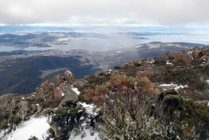 Kunanyi & Mt Wellington Explorer Bus: One-Way Bus Pass