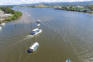 Launceston: 2.5-Hour Morning or Afternoon Discovery Cruise