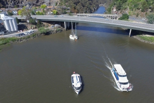Launceston: 50-Minute Cataract Gorge Cruise
