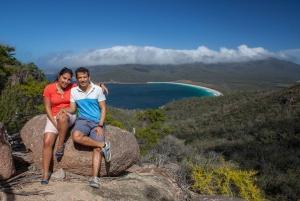 Launceston to Hobart via Wineglass Bay Full-Day Excursion