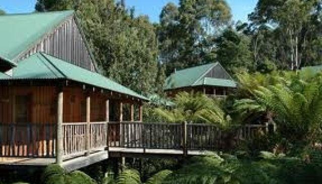 Lemonthyme Lodge Wilmot