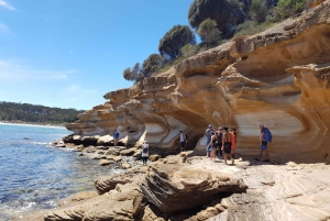 Maria Island: Day Trip with Walk, Wombats, and Picnic Lunch