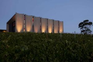 Moorilla's Wine Meets Art: Mona Experience