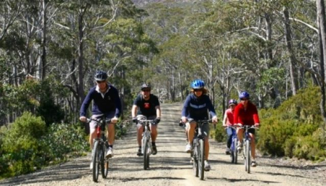Mountain Bike Tasmania