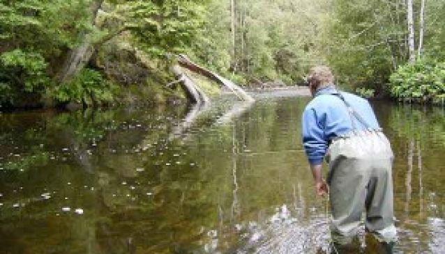 RiverFly Tasmania