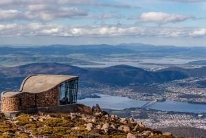 Shore Excursion: Hobart Wanderer