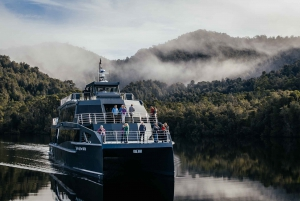 Strahan: Gordon River Cruise with Buffet Lunch