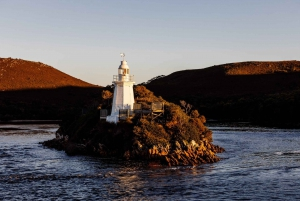 Strahan: Gordon River Sunset and Dinner Cruise